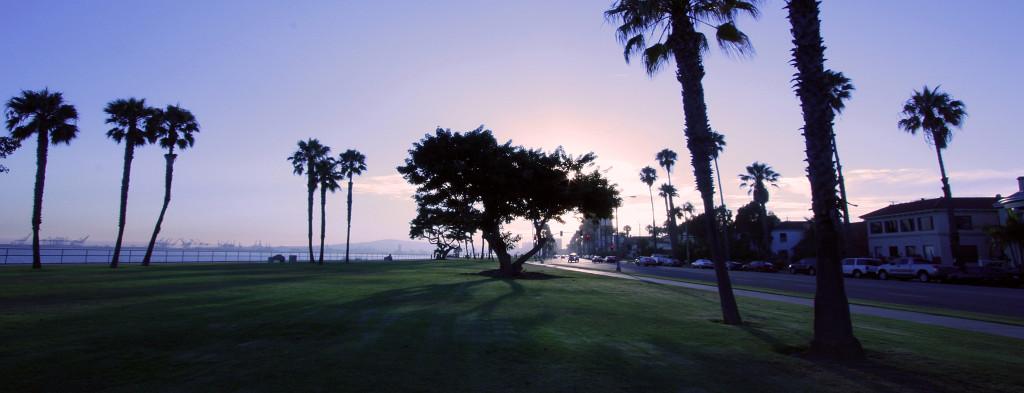 Bluff_park_long_beach